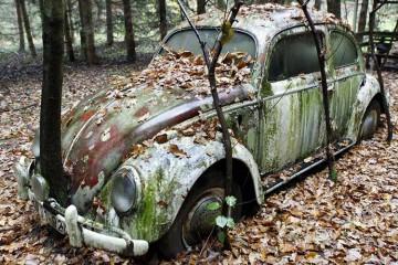 VW-FEHAC-760-BREED